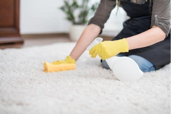 cleaning dog diarrhea from wool carpet