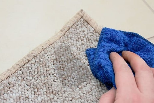 wipe carpet with damp cloth