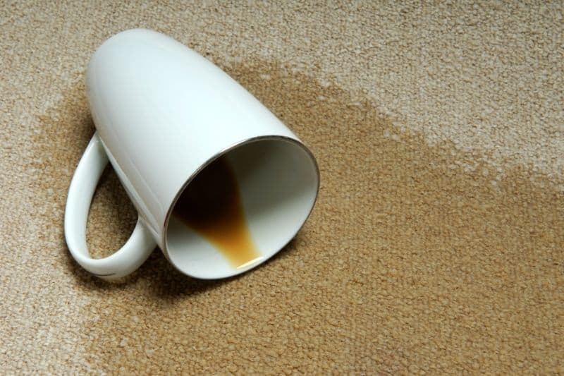 how to get a coffee stain out of carpet