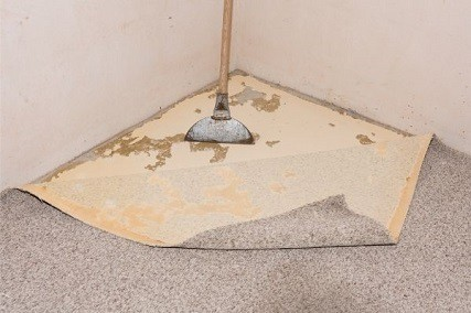 How to Remove Carpet Glue from Concrete Floors in 5 Easy Ways