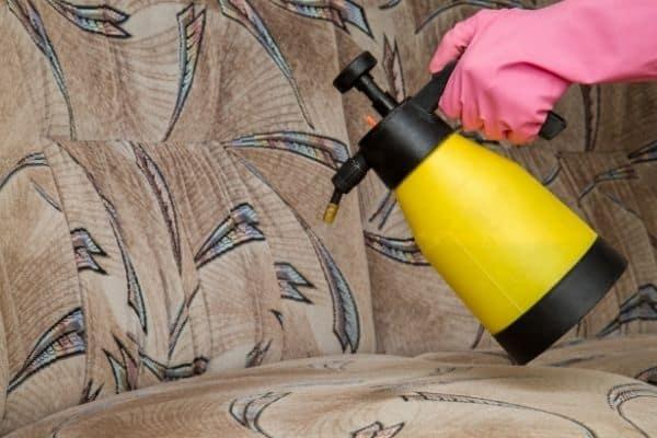 spraying sofa 1