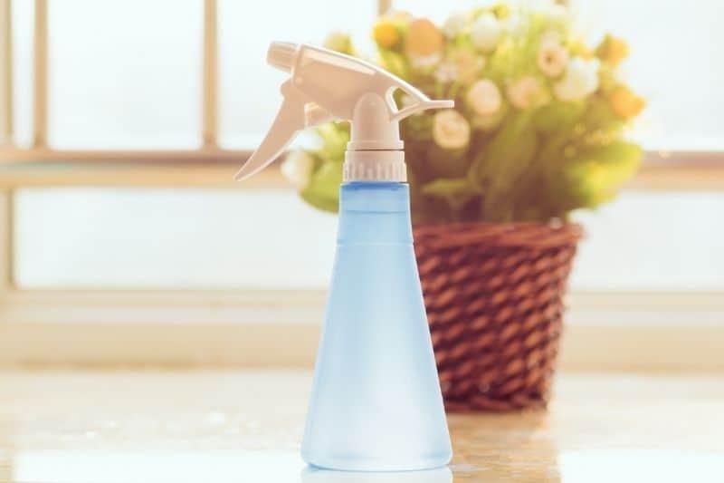 vinegar and water spray