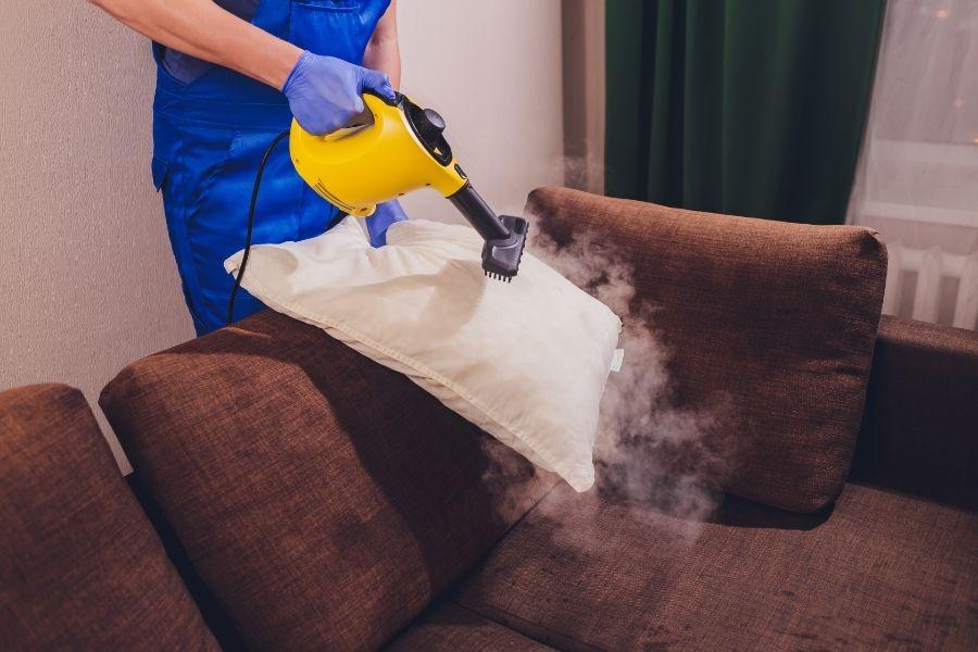 steam clean couch cushions