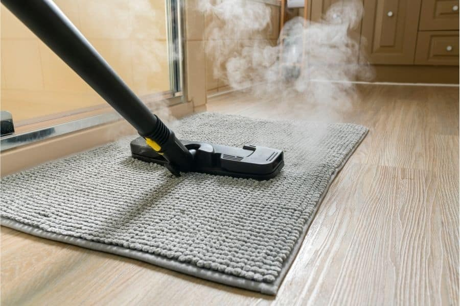 using steam cleaner