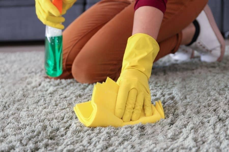 blotting out vinegar on carpet