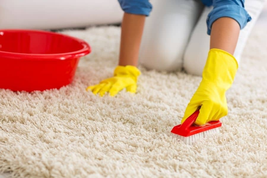 clean carpet with soap and water