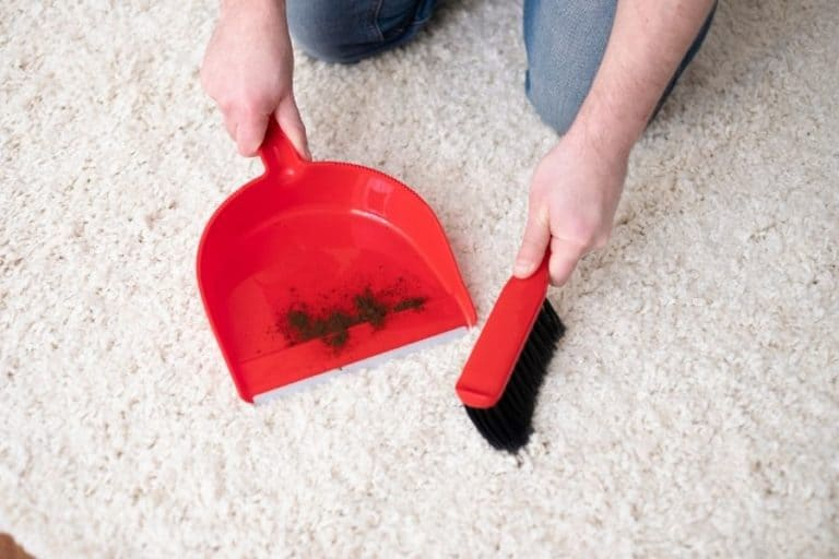 9 Ways to Clean Carpet Without Vacuum