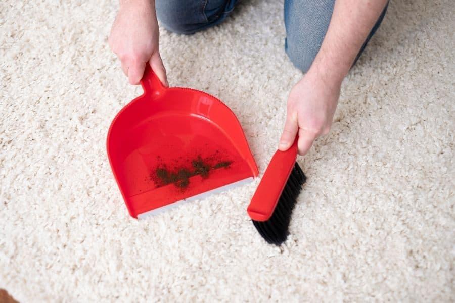 clean carpet without vacuum