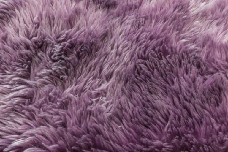 Can You Use Fabric Softener on Carpet?