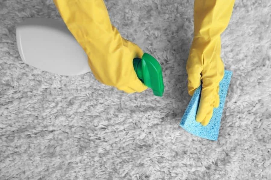 is ammonia bad for carpet