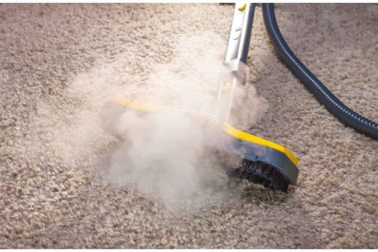 4 Ways How to Sanitize Carpet Without Steam